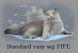standardrasy